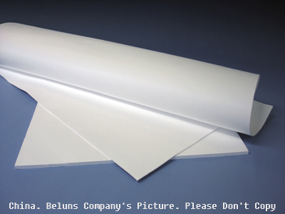 Expanded (Eptfe) PTFE Sheet